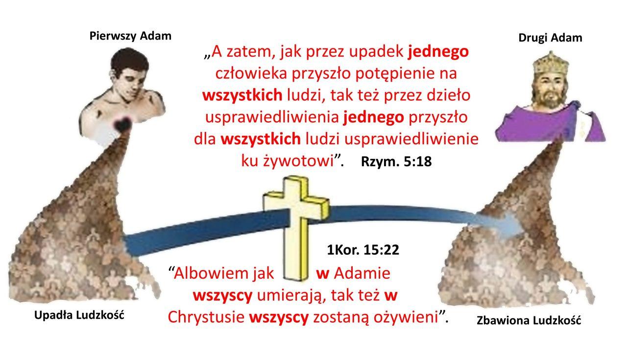 PIERWSZY I DRUGI ADAM